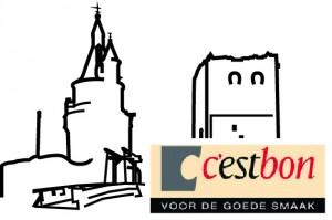 kasteel_wijkbijduurstede